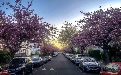 Spring Season Maintenance Tips For A Healthy Car